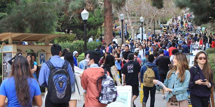 college admissions mania